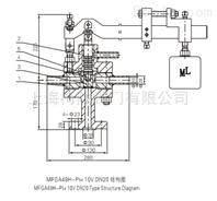 MFGA49H-P54 10V  DN20脉冲式安全阀(W)