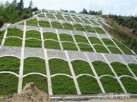 生態框護坡模具制造廠家有哪些生產技術專業